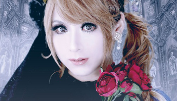 HIZAKI Exclusive Photo Book & Live DVD in Limited Quantity