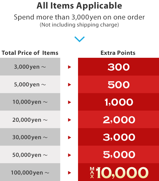 Holiday Extra Points Offer